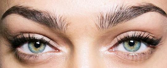 Maquillaje ojos natural Dolce&Gabbana primavera 2016 Milan Fashion Week