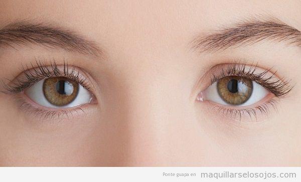 Vitaminas salud ojos